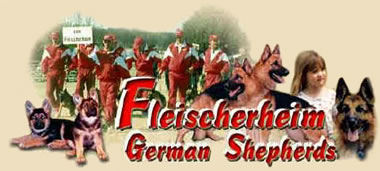 Fleischerheim German Shepherds - German Sherpherd Breeders